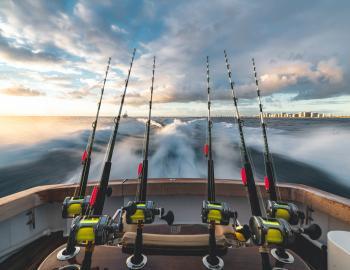Destin West Fishing Trips