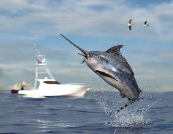 swordfish jumping in front of fishing boat in background