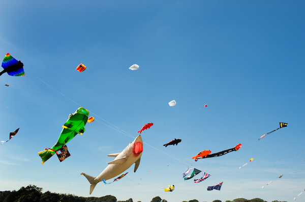Kitty Hawk Kites Festival